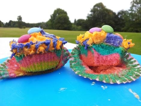 best-cupcakes-psycherdel-licked