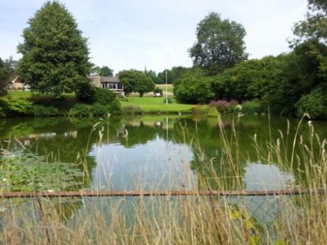 hammerwood-pond