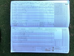 tmgs-vs-brunswick-village-jun-2014-batting-first