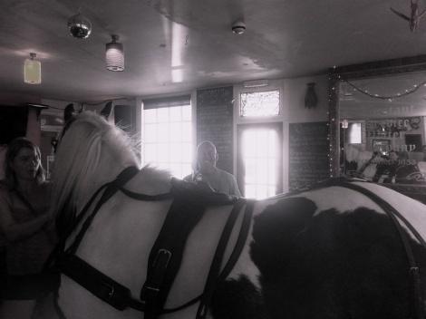 biff-horse-poynings-2014