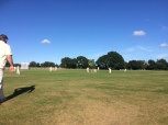 tmgs-arundel-2016-outfield