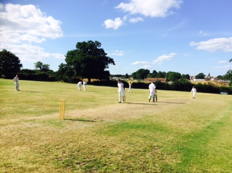 tmgs-southwater-2017-centrewicket